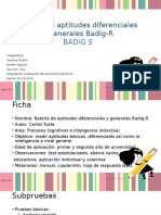 Batería de Aptitudes Diferenciales y Generales Badig R
