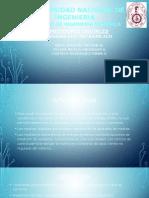 presentacion (4)