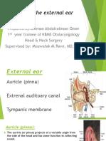 Anatomy of the External Ear