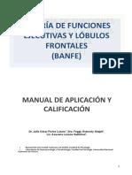 Manual Fe-rev Julio Maura 2-1 Aplicacion y Calificacion