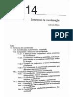 Estruturas de Coordenação - Mateus Et Al