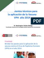 VPH 2014 -Lineamientos Tecnicos
