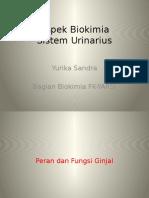 Biokimia Sistem Urin Dr Yurika