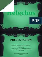 Hel Echos