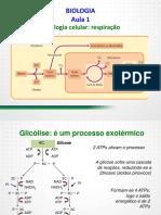 sgc_cbm_mg_2014_intensivao_cfo_biologia_01_a_28.pdf