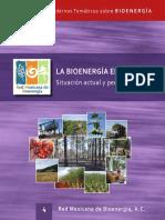 La Bioenergía en Mexico