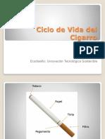 Ciclo de Vida Del Cigarro