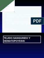 CLASE-1-TEJIDO-SANGUINEO-Y-HEMATOPOYESIS.pptx