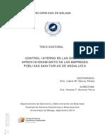 TD_1_CONTROL_INTERNO_UM_2010.pdf