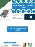 Patologias Del Concreto Fresco