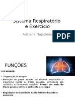 Adaptacoes Ventilatorias Ao Exercicio (1)
