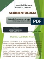 MEDIOS SEDIMENTARIOS.pptx