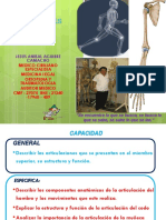 CLASE ARTICULACIONES MIEMBRO SUPERIOR.pdf