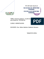 04. Informe Anemia Aplásica y Policitemia