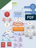 Mapa Conceptual NOM 022