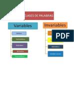 DETERMINANTES ARTÍCULOS.docx