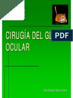 cirugiaglobo.pdf