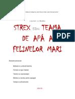 STREX sau TEAMA  DE  APÁ  A FELINELOR  MARI   (comedie)