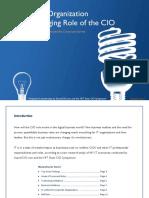 roleofcioreport.pdf