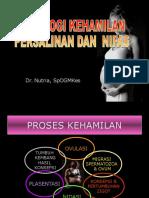 Fisiologi Kehamilan (Dr Nutria)