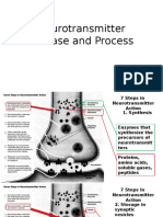 Neurotransmitter Release and Process.pptx
