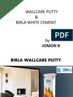 Birla Wallcare Putty