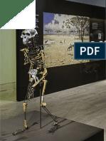 MAN Guidebook Prehistory
