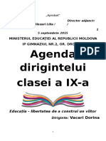 agenda_dirigintelui_ix.docx