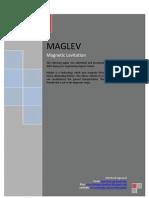Paper on Magnetic Levitation