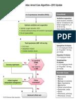 Adult Immediate Post Cardiac Arrest Care Algorithm 2015 Update