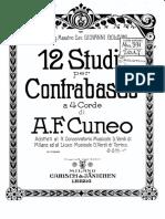 Cuneo 12 Studi