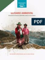 Tomo 1 - Glosario Ambiental - Ard Schoemaker