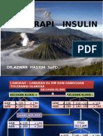Terapi Insulin Kepri
