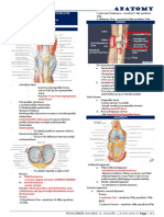 Special Review on Knee Joint and Related Structures Part 1