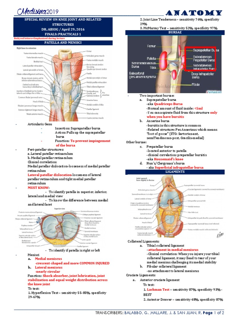 Special Review on Knee Joint and Related Structures Part 1 | Knee ...