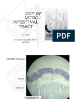 Histology MT Practicals1.pdf