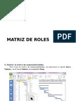 Matriz de Roles
