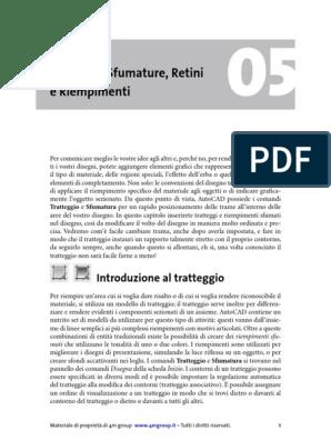 Acad2014capweb 05 Tratteggi E Retini