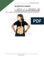 Sistema Digestivo 6º CN