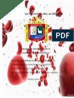 Universidad Nacional Del Altiplano Anemia[1]