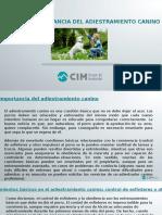 CIM Formación - La Importancia Del Adiestramiento Canino