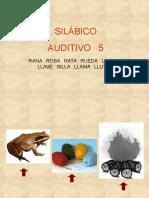 sil-audit-5-rll