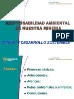 SOSTENIBILIDAD AMBIENTAL (1)
