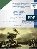 Desarrollo Sostenible y Ag....21