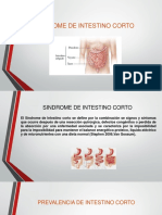 Sindrome de Intestino Corto Listo
