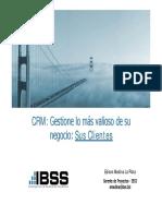 IBSS CRM.pdf