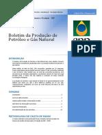 Boletim de Produção de Petróleo e Gás Natural