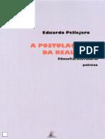 Eduardo Pellejero a Postulação Da Realidade Lisboa Vendaval 2009