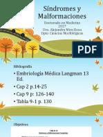 Síndromes y Malformaciones Medicina 2017