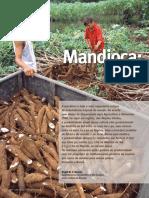 mandioca_cienciahj.pdf